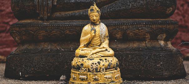 Três Verdades Budistas Que Farão Você Se Sentir Melhor Parque Dos Ipês